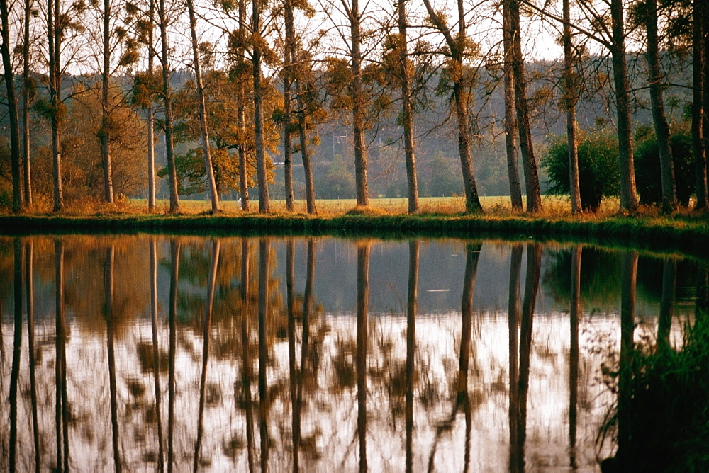 Reflection of multiple trees in Bungundy Canal Lake, France
