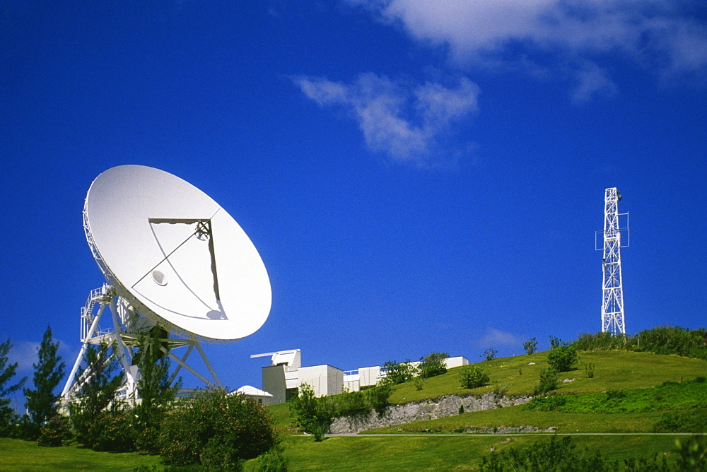 Side view of satellite dish amidst grass and shrubs, Devonshire, Bermuda