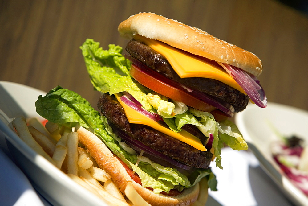 Close-up of a hamburger and French fries