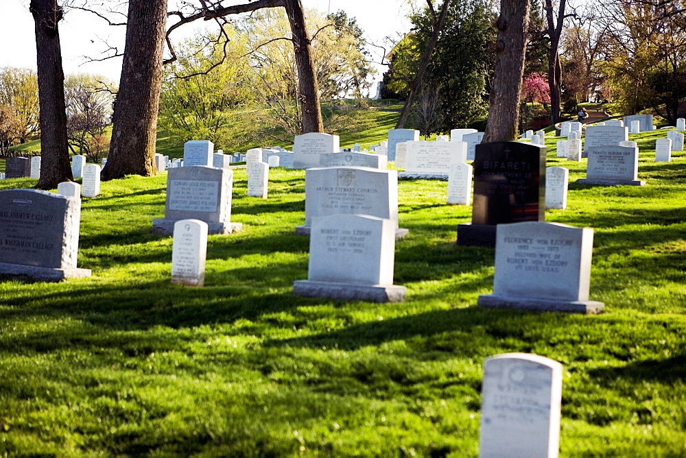 Gravestones in a graveyard, Arlington National Cemetery, Arlington, Virginia, USA