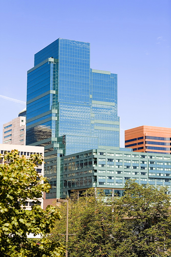 Buildings in a city, Baltimore, Maryland, USA