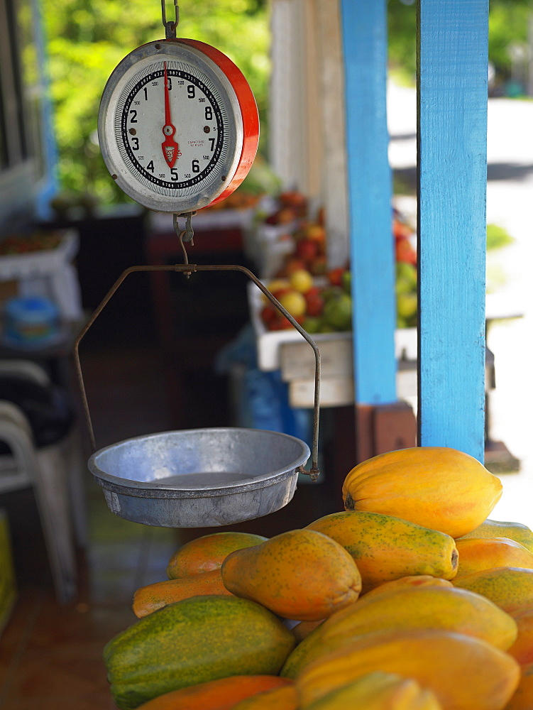Weighing scale over a heap of papayas at a market stall, Providencia, Providencia y Santa Catalina, San Andres y Providencia Department, Colombia
