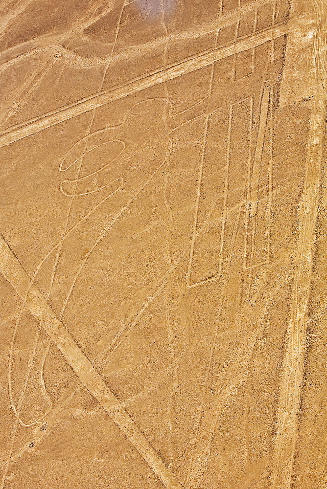 Aerial view of Nazca lines representing a parrot in a desert, Nazca, Peru