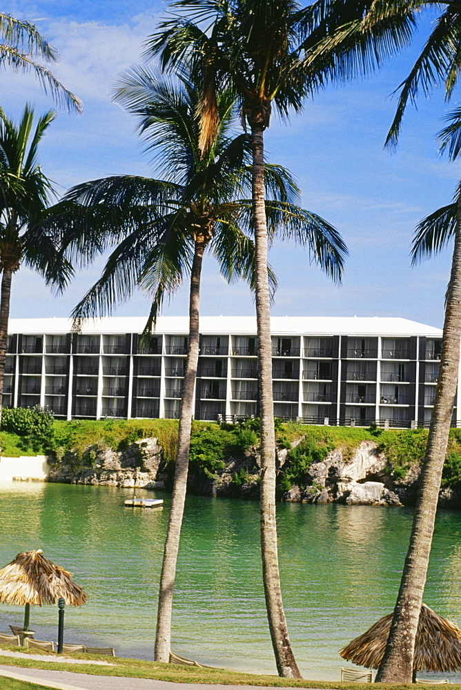 Front view of palm trees at Somesta hotel, Bermuda