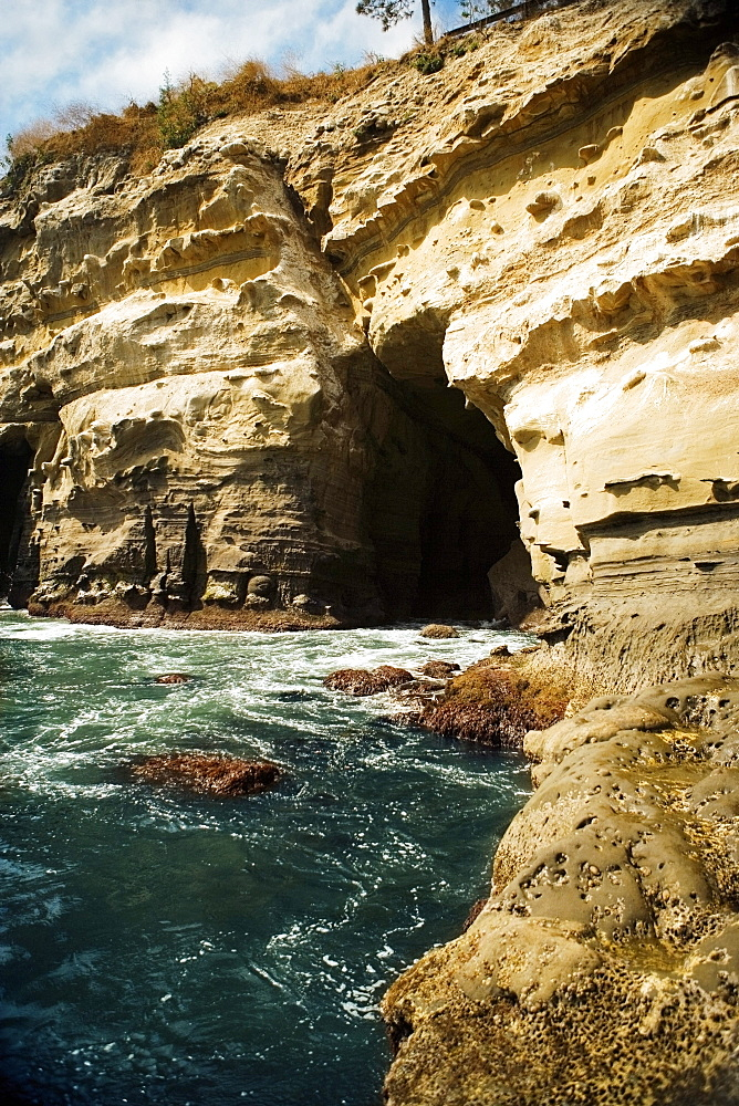 Low angle view of a cliff, La Jolla Reefs, San Diego Bay, California, USA