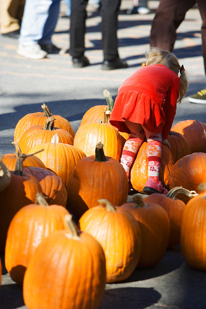 Rear view of a girl bending over a heap of pumpkins