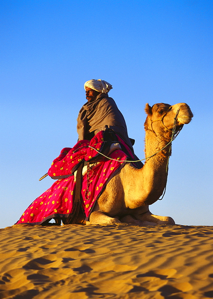 Low angle view of a mid adult man riding a camel in a desert, Rajasthan, India