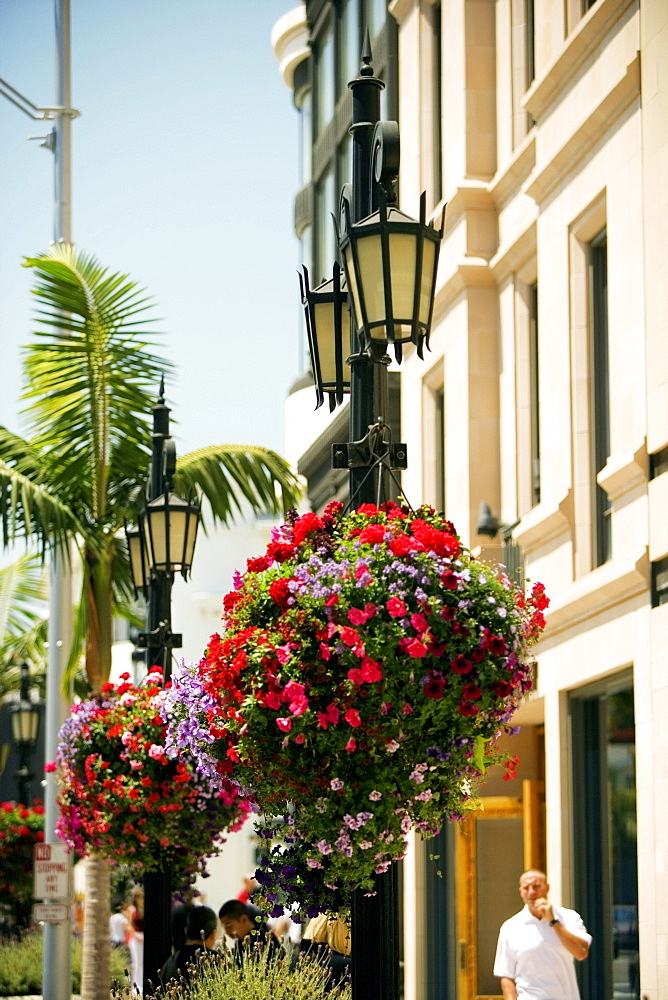 Ornate street light on a street, Rodeo Drive, Los Angeles, California, USA