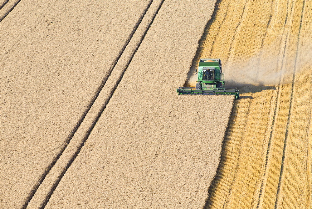 Combine harvester, harvesting wheat in rural field