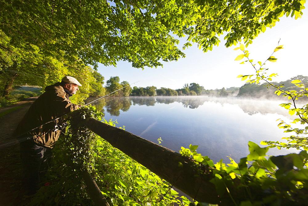 Fisherman carp fishing at dawn at fence along tranquil misty lake