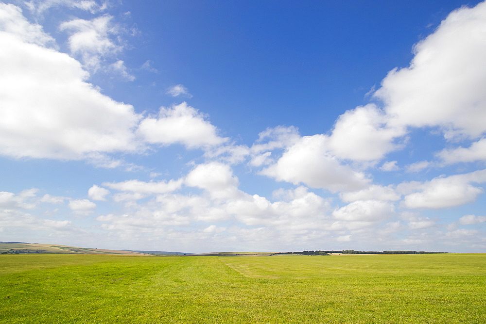 Wide Angle View Of Grass Field With Blue Sky