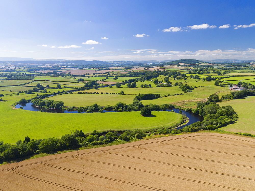 Aerial View Of Green English Farm Fields In Herefordshire (Drone) - 786-10220