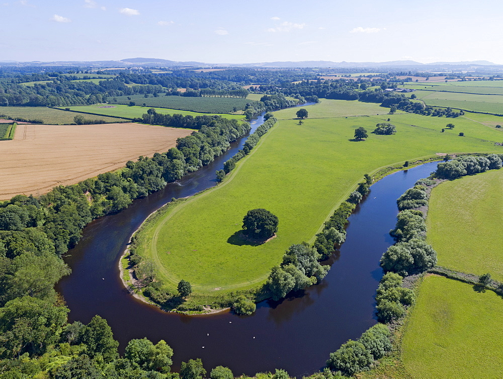 Aerial View Of Green English Farm Fields In Herefordshire (Drone) - 786-10221