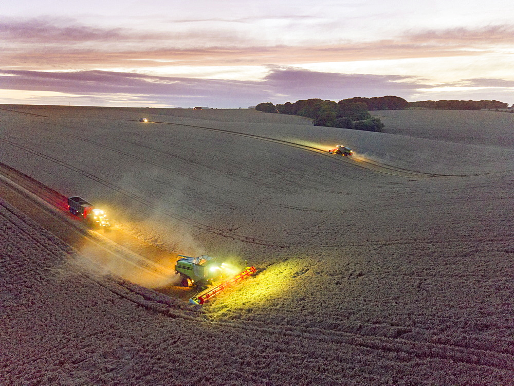 Aerial View Of Combine Harvester In Wheat Field At Dusk (Drone)