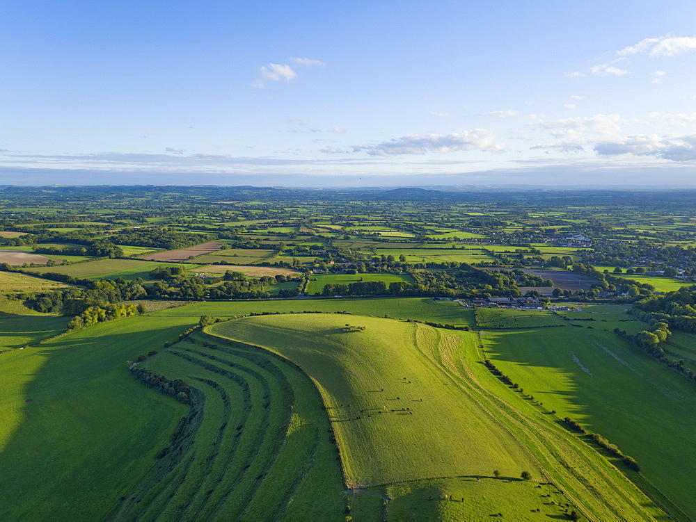 Aerial Landscape Of Green English Farm Fields In Wiltshire