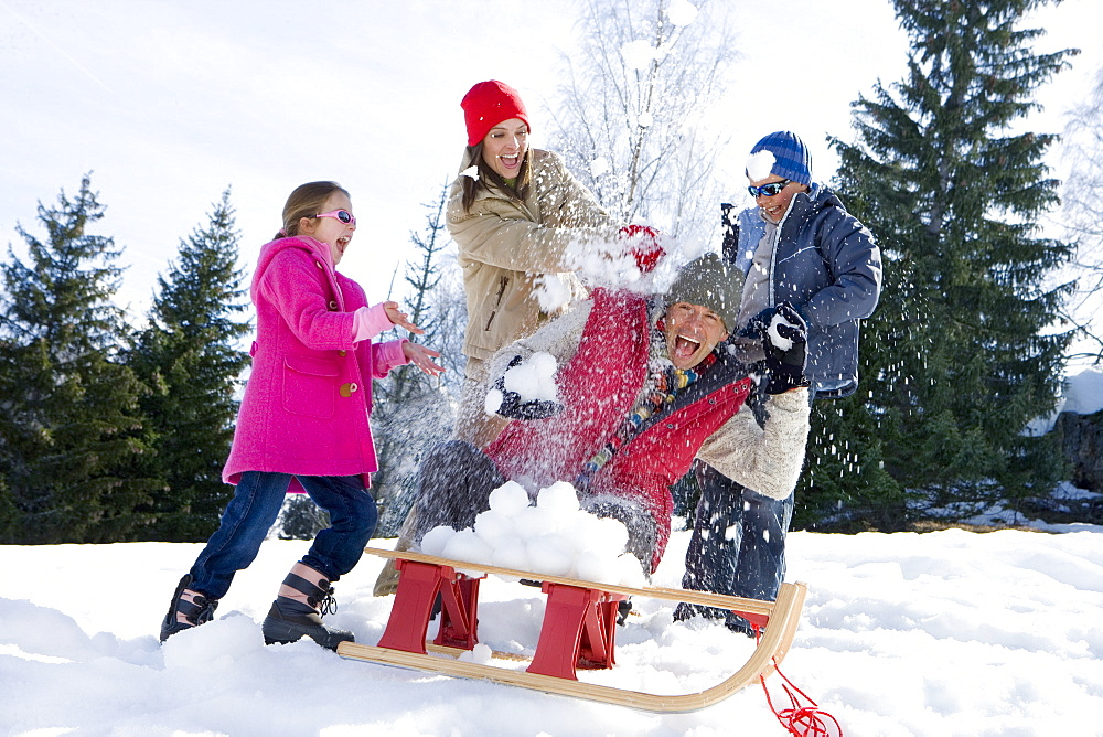 Family of four having snow fight in snow field, sled in foreground