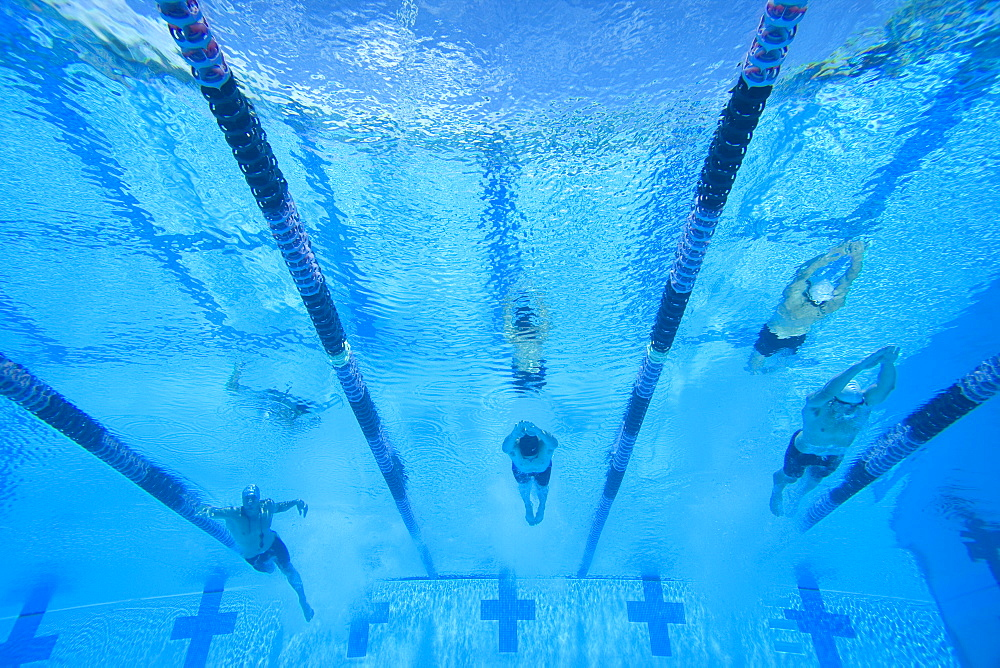 People swimming lengths in swimming pool, underwater view - 786-4055