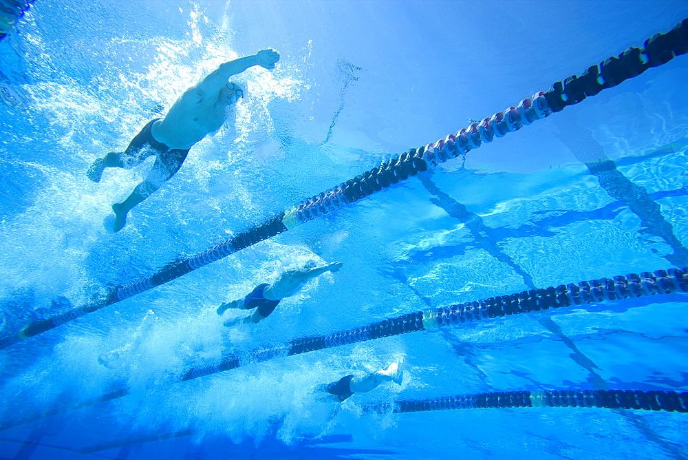 People swimming lengths in swimming pool, underwater view