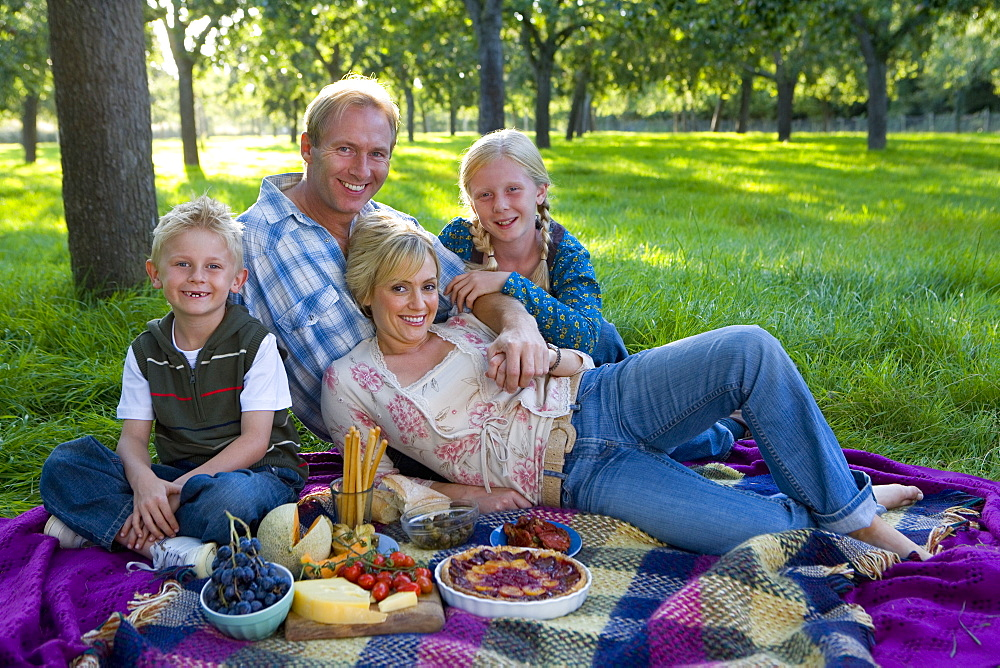 Family of four having picnic, smiling, portrait