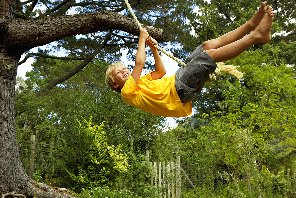 Boy (7-9) swinging on rope swing hanging from tree in garden, smiling, side view