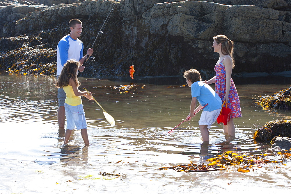 Family catching crab with fishing rod in tide pool