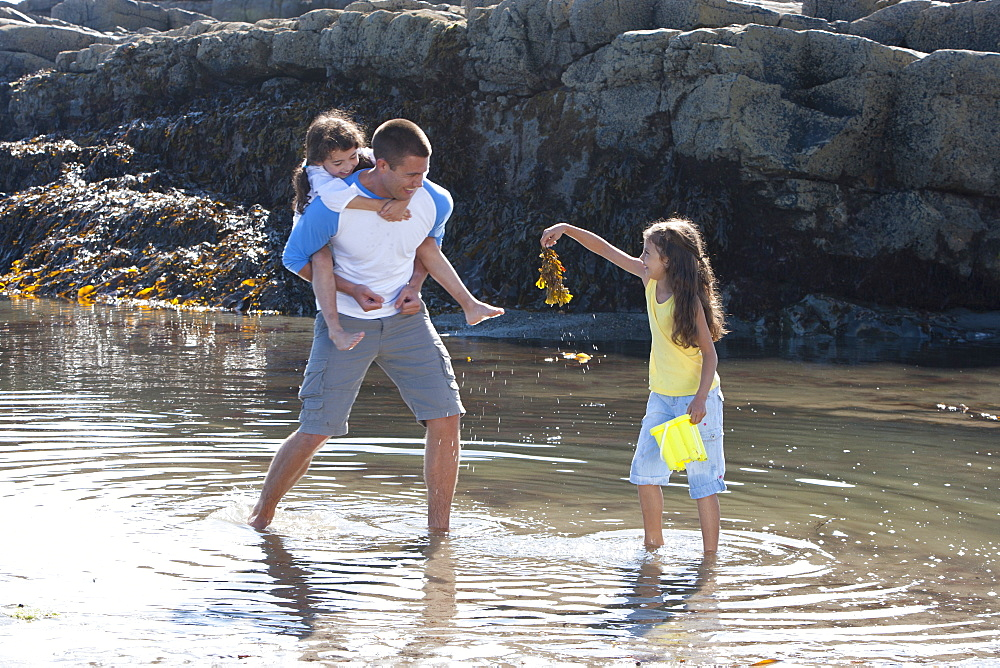 Father and daughters wading in tide pool