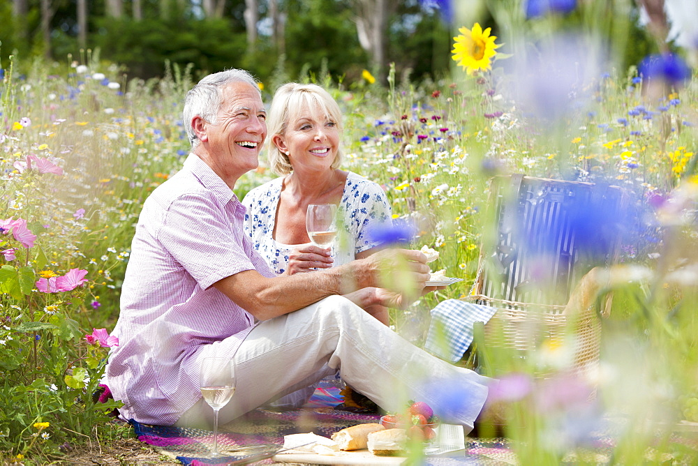 Senior couple drinking wine and having picnic in spring field
