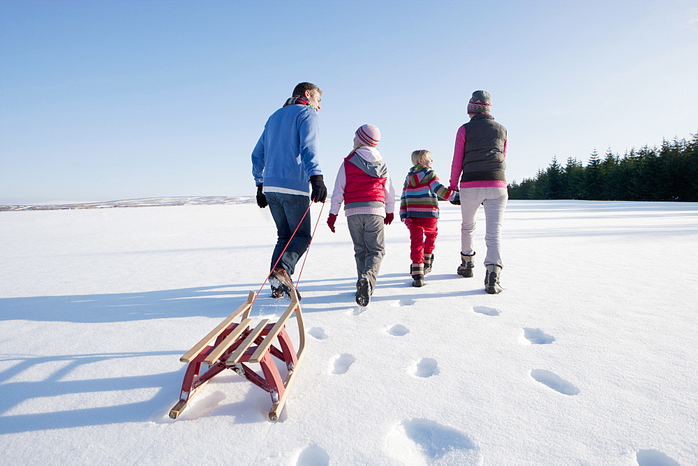 Family walking and pulling sled in snow