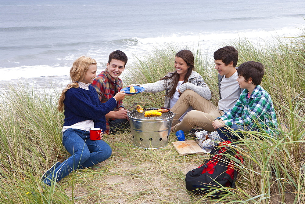 Teenage friends enjoying barbecue in grass on beach