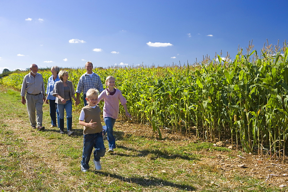 Family of three generations walking by cornfield