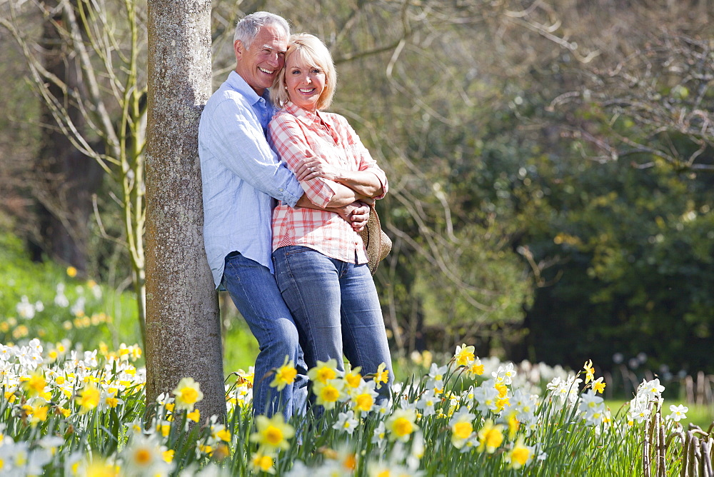 Smiling senior couple hugging and leaning against tree trunk in sunny daffodil field