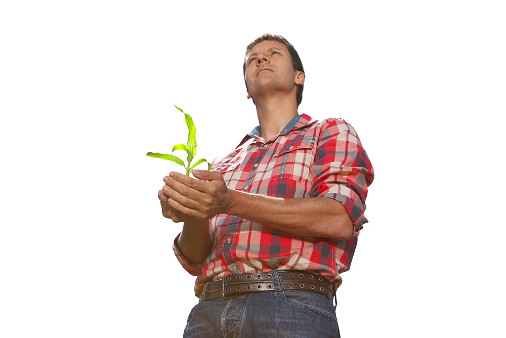 Cut Out Of Farmer Holding Seedling
