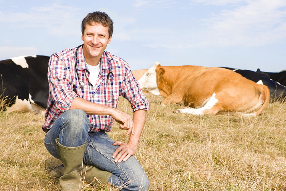 Portrait Of Vet With Cattle In Field