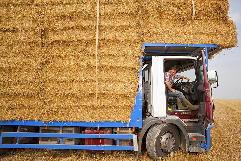 Farmer Driving Lorry Loaded With Straw Bales In Field - 786-9451
