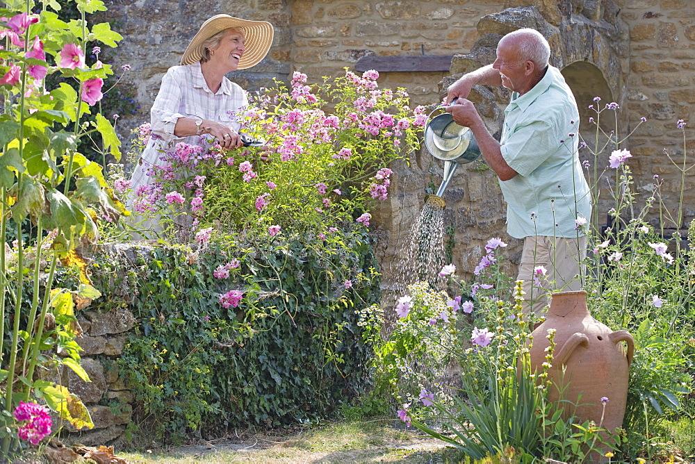 Senior Couple Working In Beautiful Cottage Flower Garden
