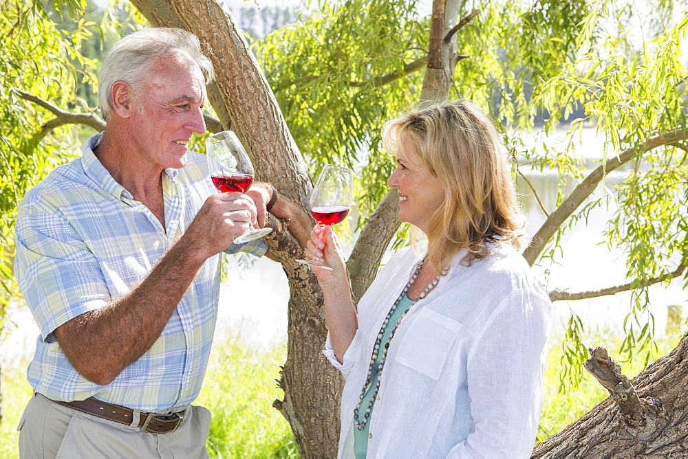 Senior Couple Enjoying Glass Of Wine Outdoors