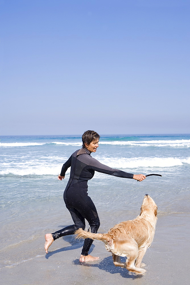 Woman in wetsuit playing with dog on beach