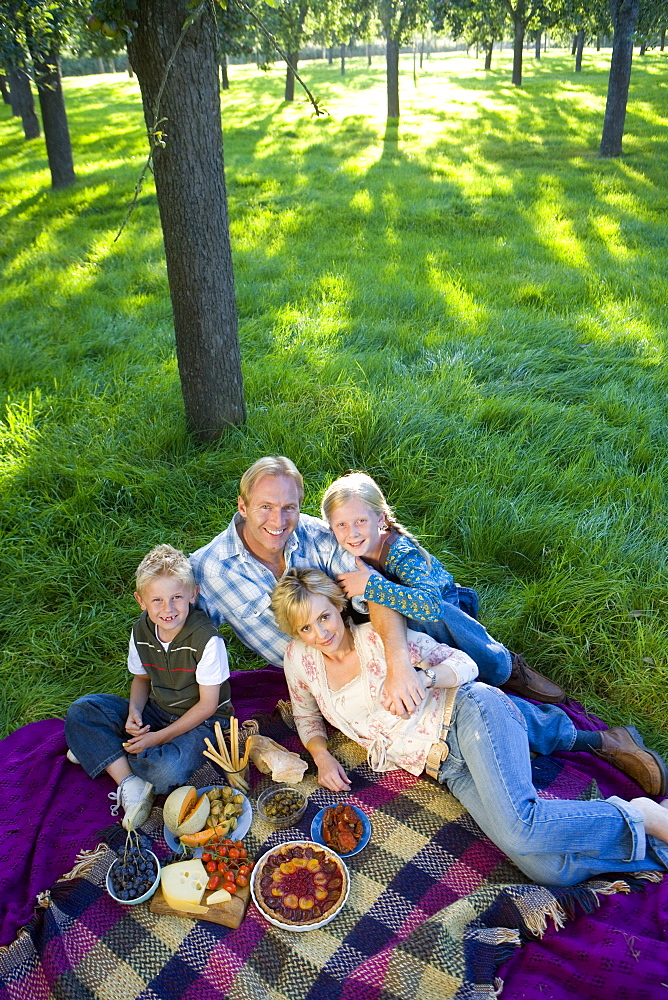 Family of four having picnic, smiling, portrait, elevated view