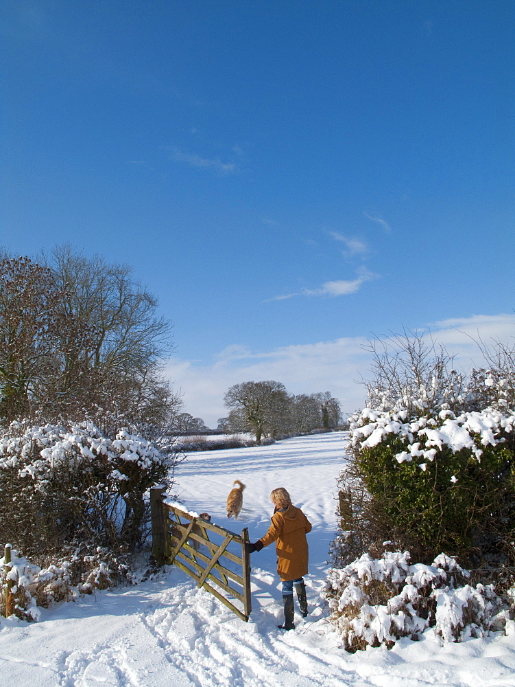 Woman and dog walking in snowy field