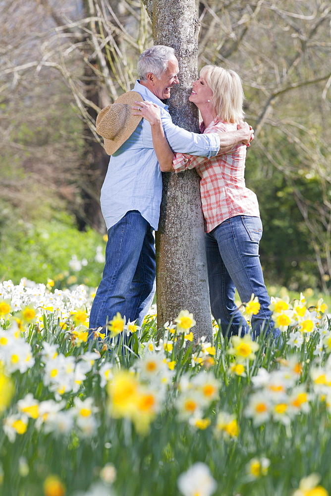 Smiling senior couple hugging around tree trunk in sunny daffodil field