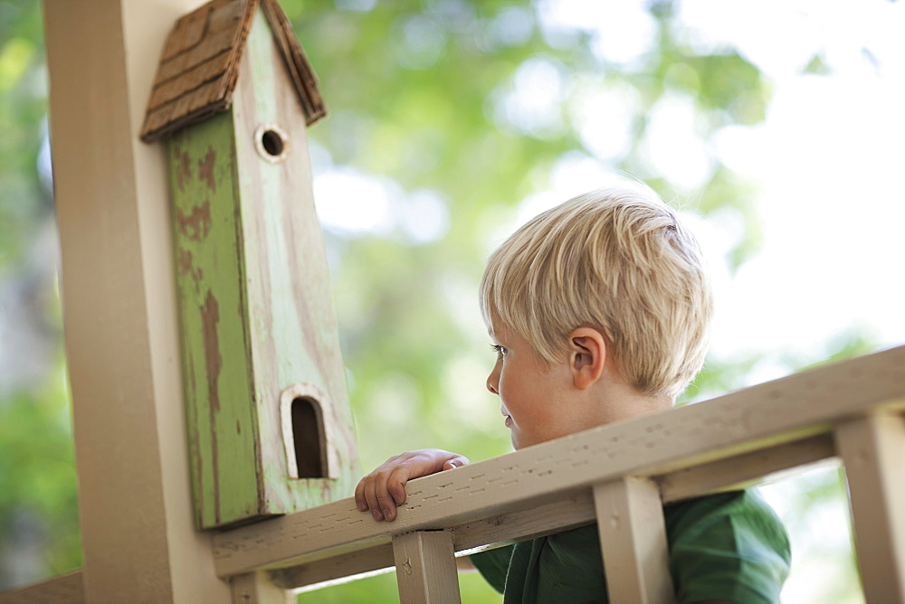 A child examining a bug box on a porch, Utah, USA