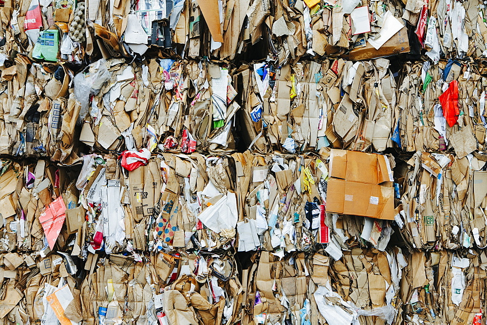 Recycling facility with bundles of cardboard sorted and tied up for recycling, Washington state, USA