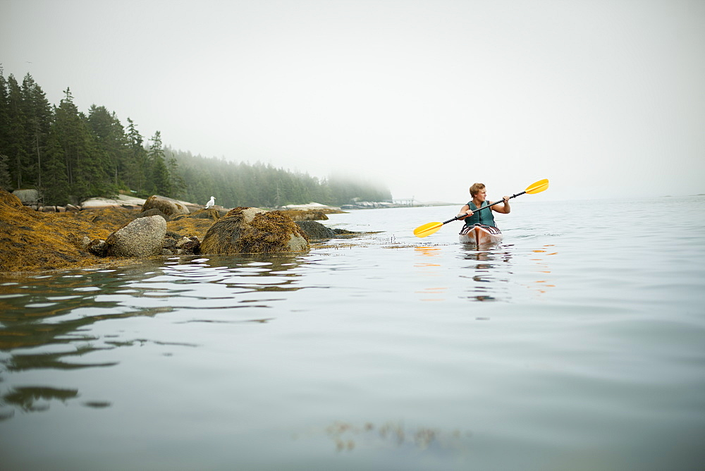 A man paddling a kayak on calm water in misty conditions. New York State, USA, New York state, USA