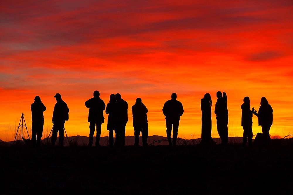 Photographers at sunset, Skagit Flats, Washington, Skagit Flats, Washington, USA