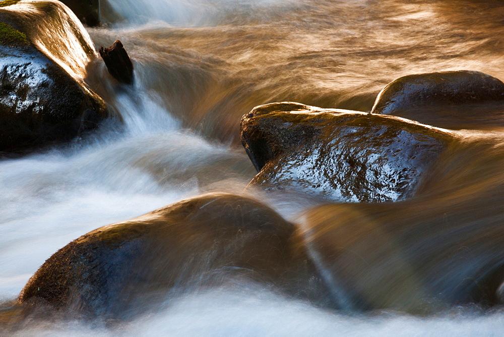 Barnes Creek, Olympic National Park, Washington, USA, Barnes Creek, Olympic National Park, Washington, USA