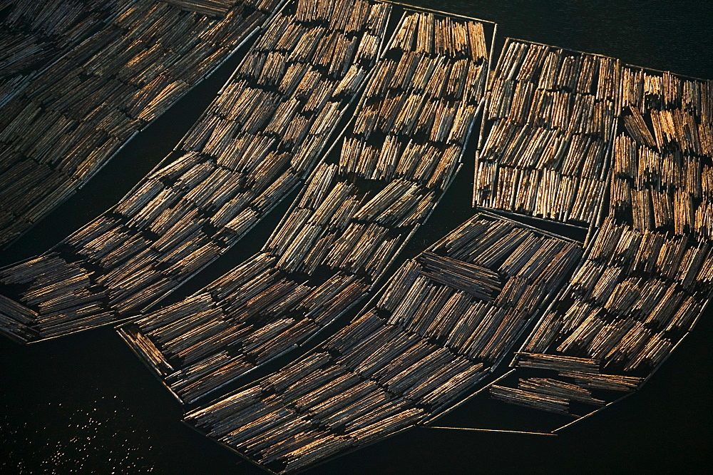Logs awaiting export, Skagit County, Washington, Skagit County, Washington, USA