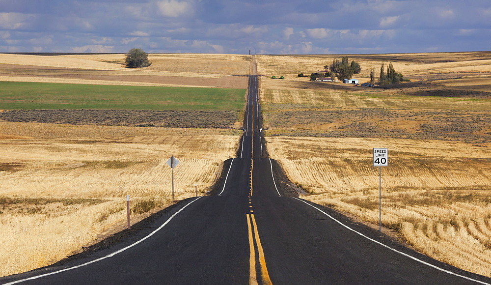 A straight rural road through crops fields, stretching into the distance at Palouse, Washington, Palouse, Washington, USA