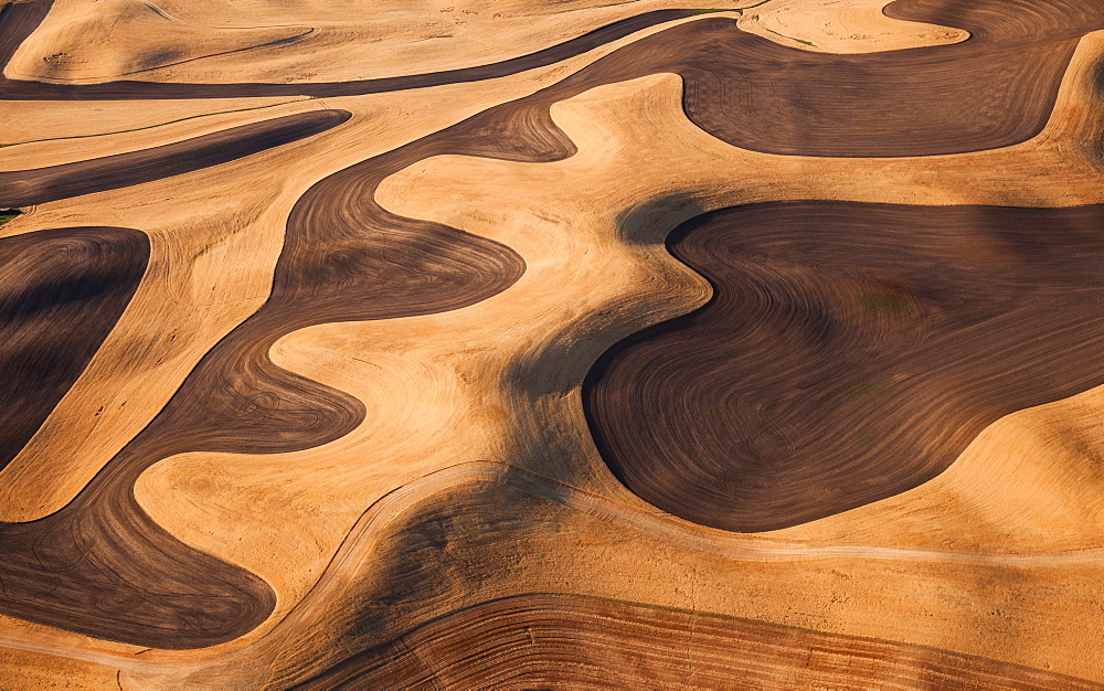 Farmland landscape, with ploughed fields and furrows in Palouse, Washington, USA. An aerial view with natural patterns, Palouse, Washington, USA - 1174-1917
