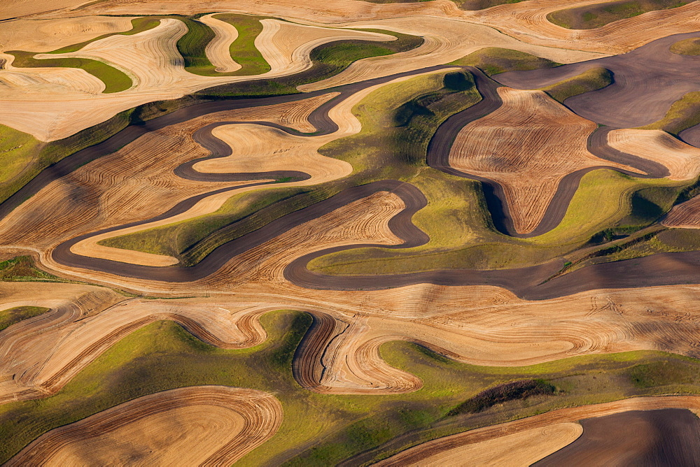 Farmland landscape, with ploughed fields and furrows in Palouse, Washington, USA. An aerial view with natural patterns, Palouse, Washington, USA