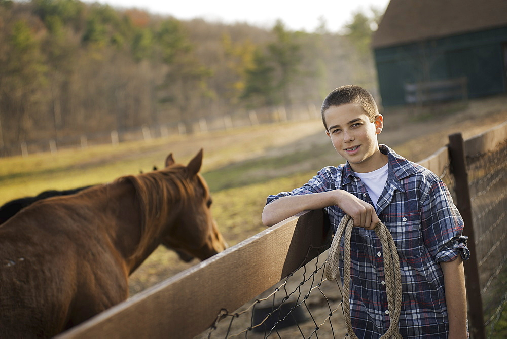 A boy standing by the fence of a horse paddock. A bay horse, Saugerties, New York, USA